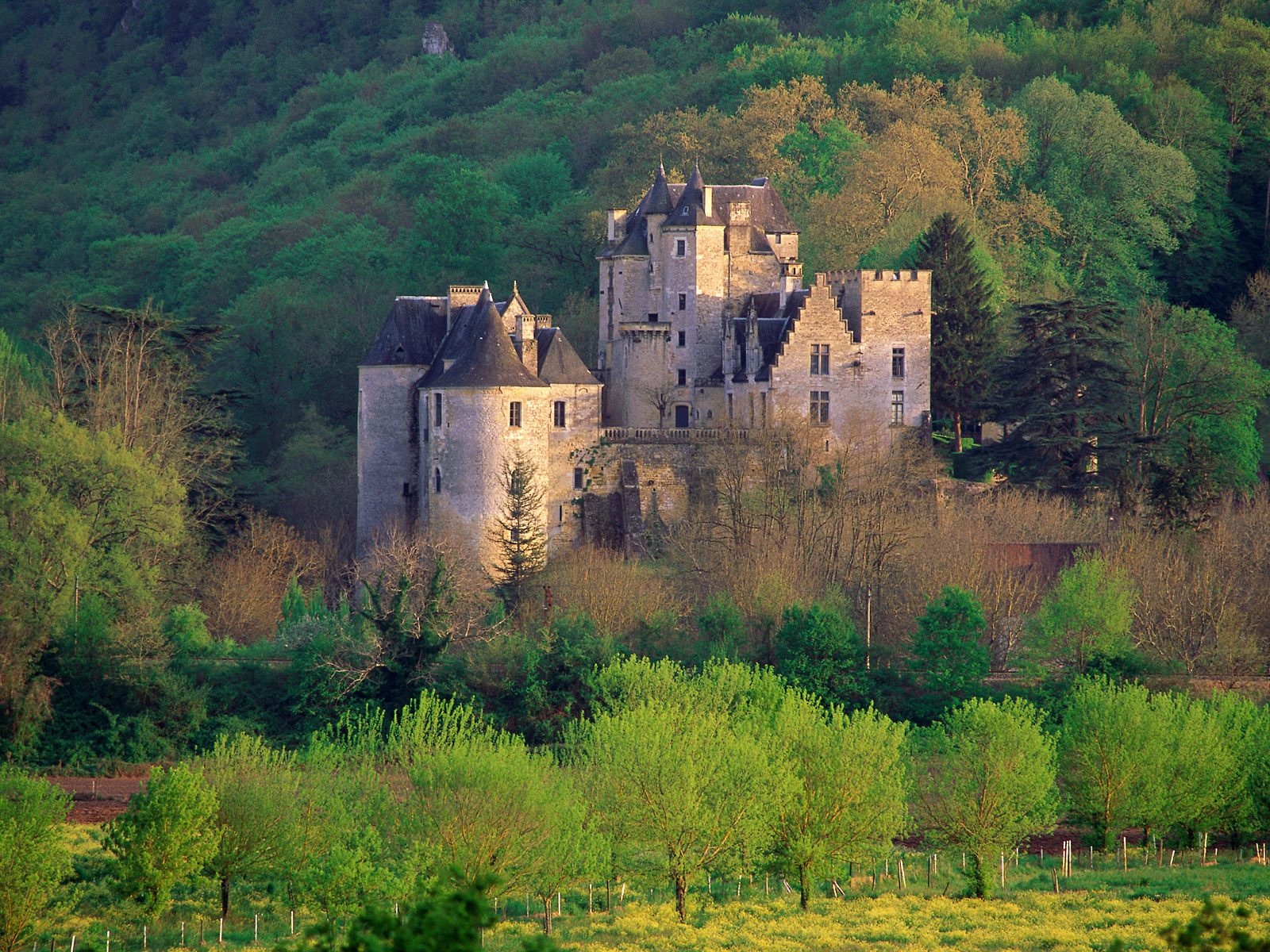 Fayrac Manor 5 Beynac 1 France